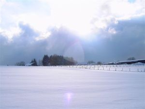 Winterimpressionen_rommerscheid_0_4